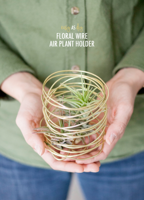 Easy As D I Y Floral Wire Air Plant Holder Dream Green Diy