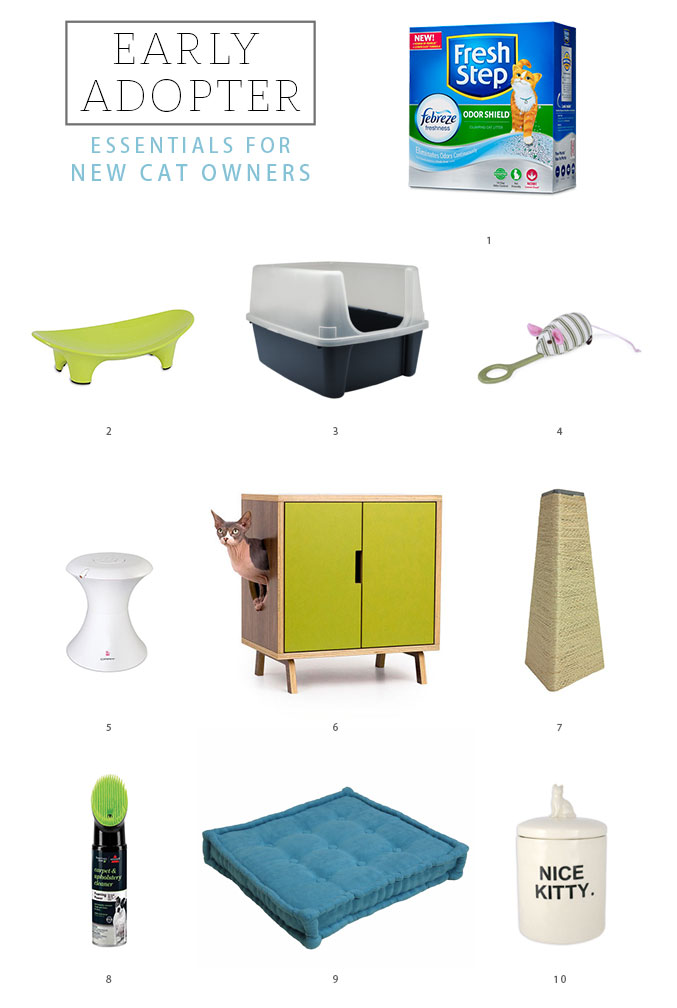 http://www.dreamgreendiy.com/wp-content/uploads/2016/03/03-34338-post/Essentials-for-New-Cat-Owners-677.jpg