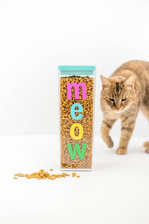 DIY Colorful Meow Cat Food Container | dreamgreendiy.com + @purina