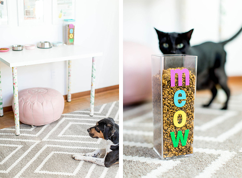 How To Keep The Dog Out Of The Cat Food | dreamgreendiy.com @petfinder #MetOnPetfinder