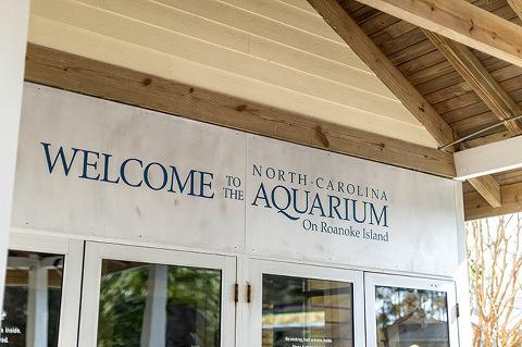 http://www.dreamgreendiy.com/wp-content/uploads/2017/03/21-40999-post/NC-Aquarium-17-FEATURED(pp_w480_h319).jpg