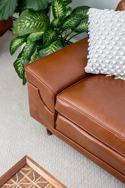 Why we re carpeted our carpeted living room dream green diy for Pet resistant carpet