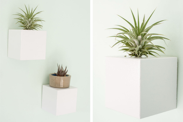This week on ehow wall mounted plant stands dream green diy for Diy wall plant holder