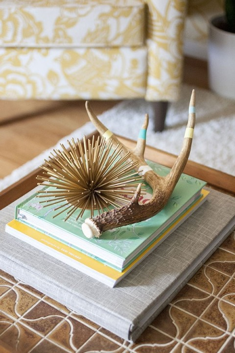 eHow-Painted-Antlers-11