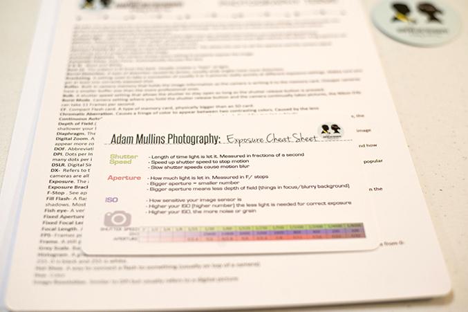 Adam Mullins Photography Workshop Recap &amp Interview | Dream Green DIY