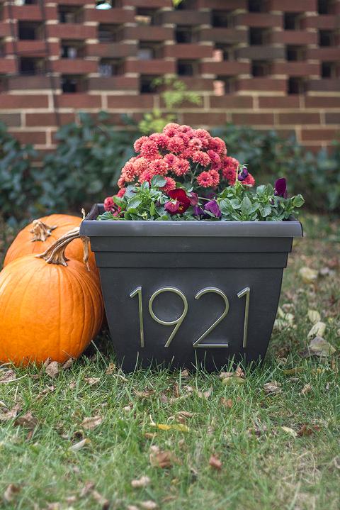 DIY House Numbers Planter | Dream Green DIY