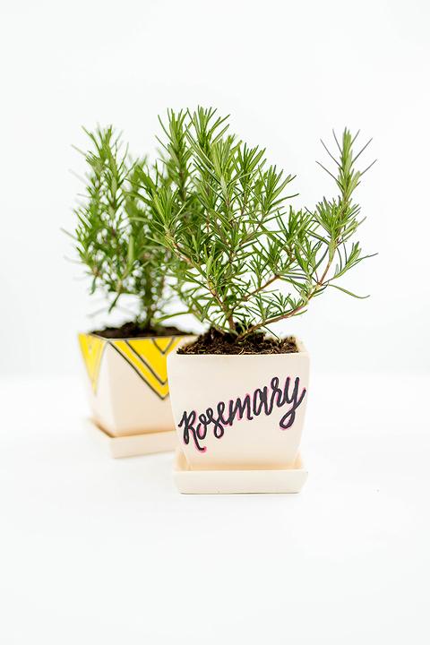 One Pot Painted 2 Ways   dreamgreendiy.com + @orientaltrading