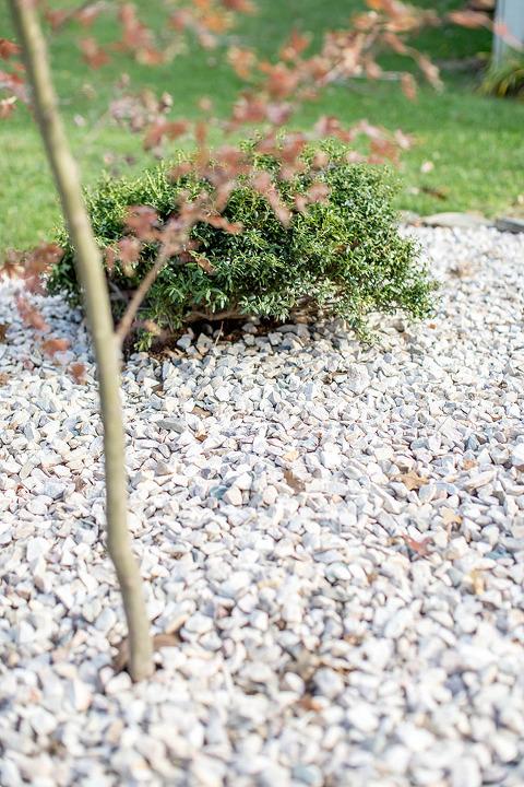 How To Create A DIY Zen-Inspired Rock Garden | dreamgreendiy.com