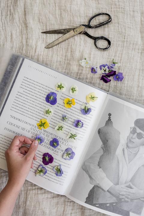 DIY Pressed Flowers Art Print