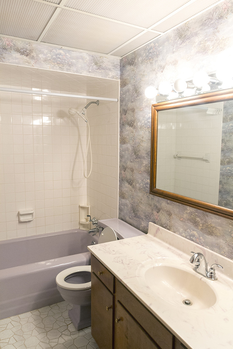 https://www.dreamgreendiy.com/wp-content/uploads/2018/03/20-46627-post/Bathroom-Ceiling-29(pp_w480_h720).jpg