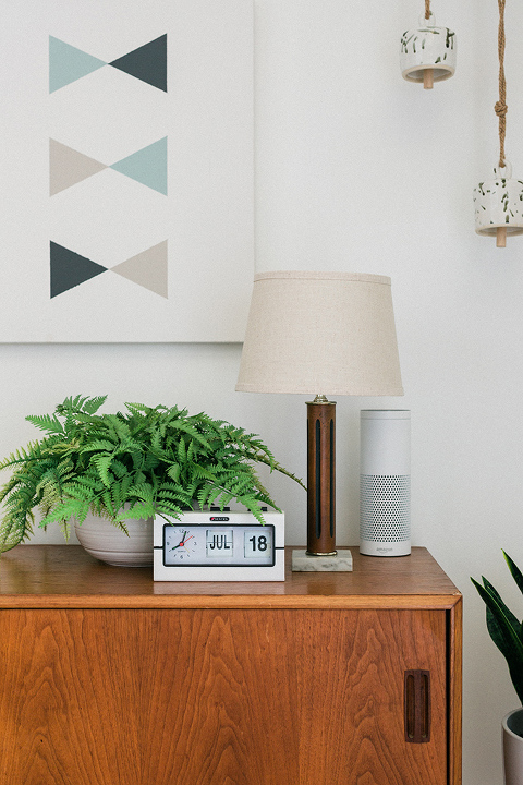 Our Favorite Things To Ask Alexa