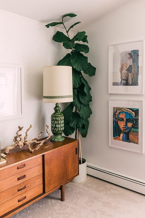Painting A Moody Dark Green Feature Wall