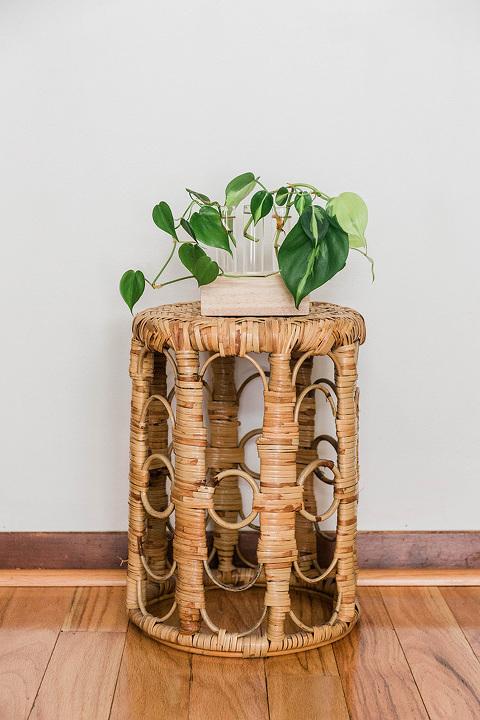 DIY Wood and Glass Propagation Station