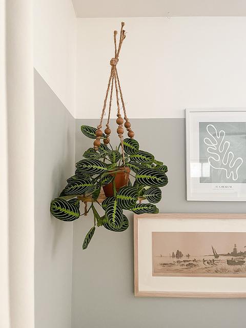 DIY Boho Hanging Wooden Plant Stand